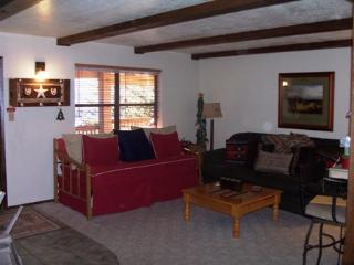 Perfect Condo with Internet Access and Television - Angel Fire vacation rentals