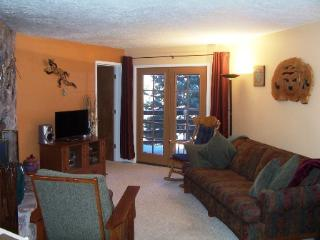 2 bedroom Apartment with Television in Angel Fire - Angel Fire vacation rentals