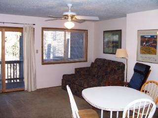 Cozy 1 bedroom Condo in Angel Fire - Angel Fire vacation rentals
