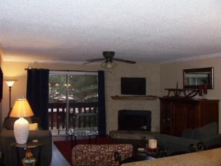 Wren 203  Condo - Angel Fire vacation rentals