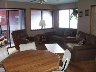 Lift B2  Condo - Angel Fire vacation rentals