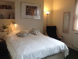 Comfortable Lewes Studio rental with Internet Access - Lewes vacation rentals