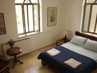 Peace, Tranquility and Superb Food - Zichron Yaakov vacation rentals
