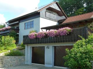 Vacation Apartment in Mistelgau - 861 sqft, nice, clean, relaxing (# 1250) - Mistelgau vacation rentals