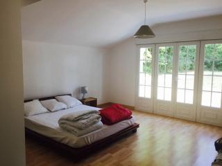 Bright 5 bedroom House in Selles-sur-Cher - Selles-sur-Cher vacation rentals