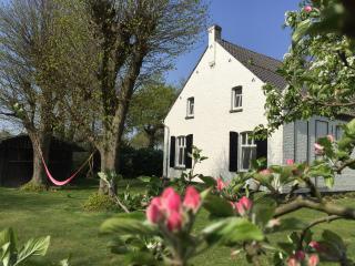 HoffenterHof, paradijs in Midden-Limburg - Ell vacation rentals