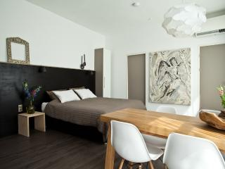 Nice Bed and Breakfast with Internet Access and A/C - Amsterdam vacation rentals