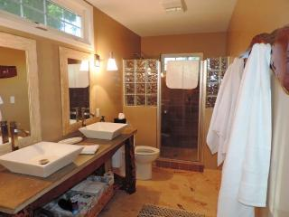 Beautiful 4 bedroom House in Fredericksburg - Fredericksburg vacation rentals