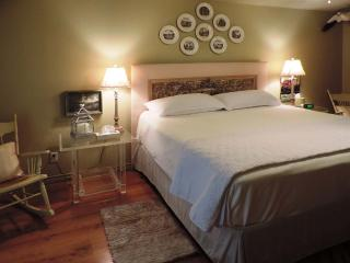 Lone Star Guest Haus - Large Suite - Fredericksburg vacation rentals