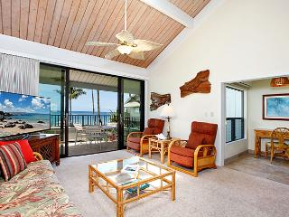 Unit 15 Ocean Front Deluxe 2 Bedroom Condo - Lahaina vacation rentals