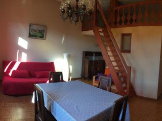1 bedroom Condo with Central Heating in Zellenberg - Zellenberg vacation rentals