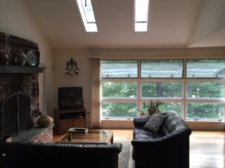 Charming 3 bedroom Cottage in New Milford - New Milford vacation rentals