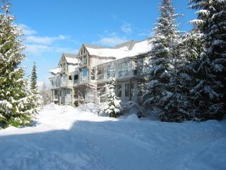 Greystone Lodge, Whistler, BC - Whistler vacation rentals