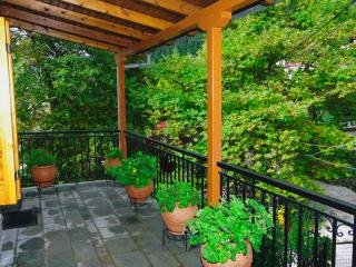 Charming Condo with Outdoor Dining Area and Television - Elati vacation rentals