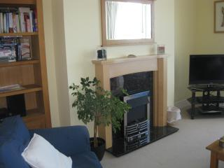 Comfortable 2 bedroom Apartment in Aberystwyth with Internet Access - Aberystwyth vacation rentals