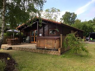 Nice 3 bedroom Lodge in Tattershall with Deck - Tattershall vacation rentals