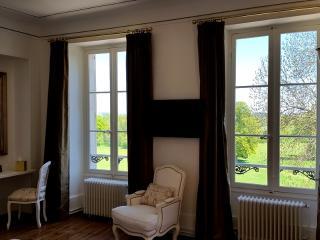 Château de Preuil - Orchids room - Saint-Amand-Montrond vacation rentals