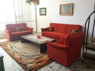 Large 3 BR apartment near Achuza: Shabbat elevator - Ra'anana vacation rentals