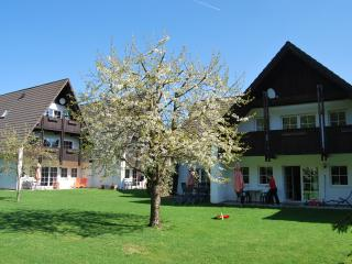 Ferienwohnung Stricker, Typ C, Terrasse - Walkenried vacation rentals