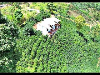 Stay in style on a real Colombian coffee farm - Jardin vacation rentals