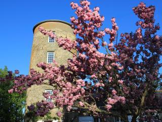 Moulin de Plaisance - Gite de charme 4 personnes - Cordemais vacation rentals