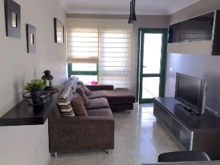 Perfect Condo with Internet Access and Television - San Bartolome vacation rentals