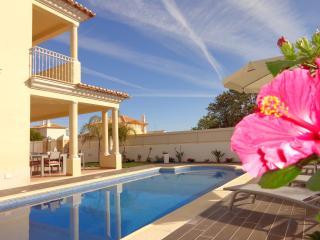 V4 Sunshine - Sesmarias vacation rentals