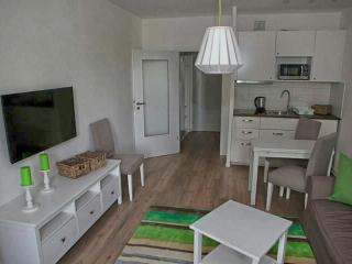 1 bedroom Apartment with Deck in Chemnitz - Chemnitz vacation rentals