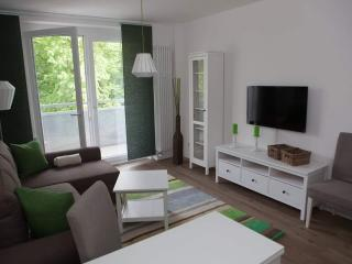 Nice Condo with Deck and Dishwasher - Chemnitz vacation rentals
