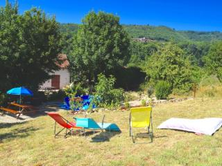 Volets Verts Appartment with south-facing garden - Mazamet vacation rentals