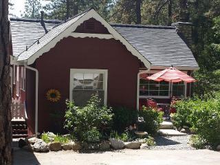 Cutest Lil Cabin in Fern Valley! - Idyllwild vacation rentals