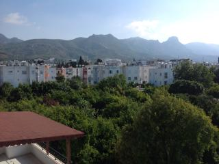 2 bedroom flat with mountain views, close to shops - Kyrenia vacation rentals