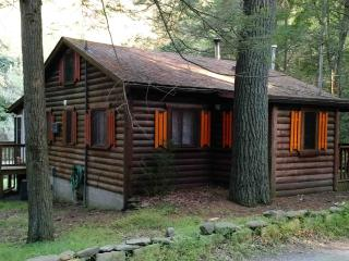 Waterfront Private Bushkill Creek Cabin - Sleeps 6 - East Stroudsburg vacation rentals