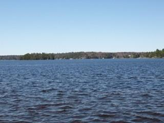 Elegant, Beachfront,Luxury, Brand New Cottage - Bracebridge vacation rentals