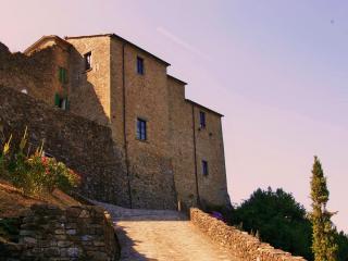 Borgo dei Malaspina casa vacanze - Mulazzo vacation rentals