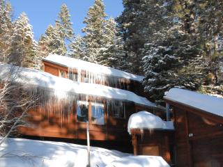 Magnificent Tahoe Retreat - Tahoe City vacation rentals