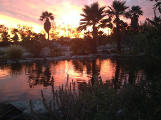 Desert Oasis w/ pond in pvt. 5 Acre Palm Grove - Desert Hot Springs vacation rentals
