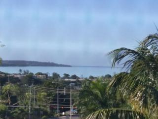 Cozy House in Mayaguez with Internet Access, sleeps 7 - Mayaguez vacation rentals