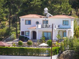 Mersinia villa - Argaka vacation rentals