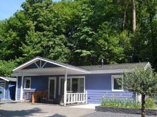 Allurepark de Thijmse Berg - Brons chalet 4 - Rhenen vacation rentals