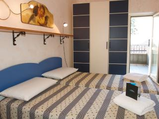 Traditional Apartment with views over Le Suquet - Cannes vacation rentals