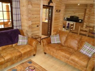 Nice 3 bedroom Cabin in Felton - Felton vacation rentals