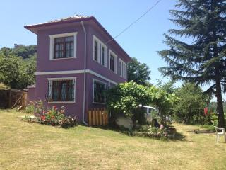 Great Black Sea View Village House - Trabzon vacation rentals