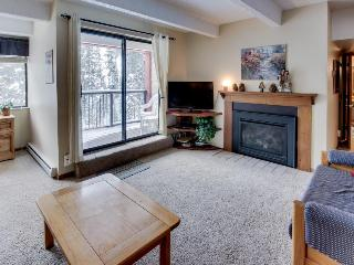 Cozy ski-in, ski-out rental! - Copper Mountain vacation rentals