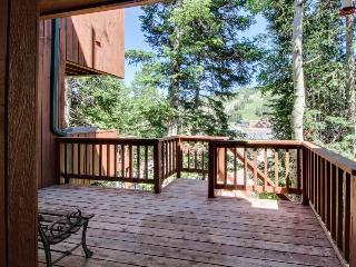 Dog-friendly ski condo near slopes & Utah parks! Ski lift right across street! - Brian Head vacation rentals
