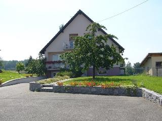 Nice 1 bedroom Bed and Breakfast in Reichshoffen - Reichshoffen vacation rentals