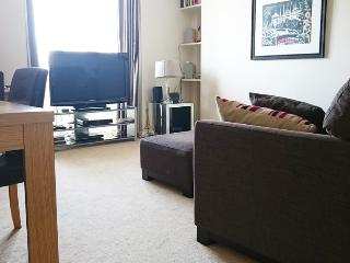 LAT - Modern 3BR apartment in excellent location - London vacation rentals