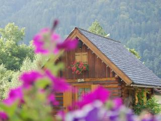 Nice Gite with Housekeeping Included and Television - Tarvisio vacation rentals
