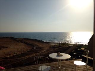 Amazing Sea View 5 room on the Tzuk Beach - Tel Aviv vacation rentals