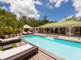 Perfect Villa with Internet Access and Dishwasher - Plum Bay vacation rentals